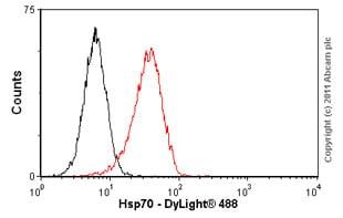 Flow Cytometry-Hsp70 antibody [C92F3A-5](ab47455)