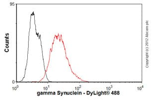 Flow Cytometry-Anti-gamma Synuclein antibody [1H10D2](ab47966)