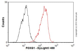 Flow Cytometry - Anti-FOXG1 antibody [mAbcam 51774] (ab51774)