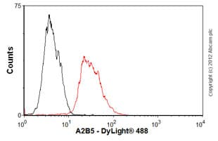 Flow Cytometry - Anti-A2B5 antibody [105] - Stem Cell Marker (ab53521)