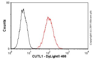 Flow Cytometry - CUTL1 antibody (ab54583)