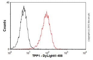 Flow Cytometry - Anti-TPP1 antibody (ab54685)