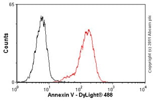 Flow Cytometry - Annexin V antibody (ab54775)