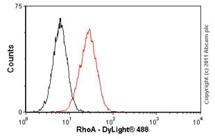 Flow Cytometry-RhoA antibody(ab54835)