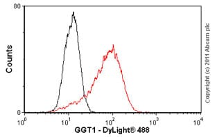 Flow Cytometry - GGT1 antibody (ab55138)