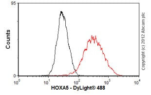Flow Cytometry-Anti-HOXA5 antibody(ab55239)