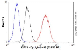 Flow Cytometry-Anti-KIFC1 antibody(ab55388)