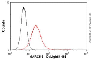 Flow Cytometry-Anti-MARCKS antibody(ab55451)