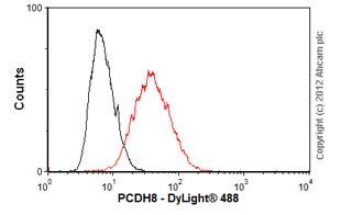 Flow Cytometry-Anti-PCDH8 antibody(ab55507)