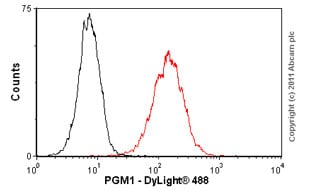 Flow Cytometry - Anti-PGM1 antibody (ab55616)
