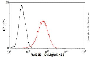 Flow Cytometry-Anti-RAB3B antibody(ab55655)