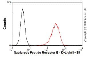 Flow Cytometry-Anti-Natriuretic Peptide Receptor B antibody(ab55724)