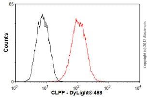 Flow Cytometry-Anti-CLPP antibody(ab56455)
