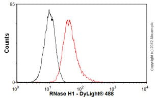 Flow Cytometry-Anti-RNase H1 antibody(ab56560)