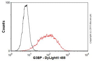 Flow Cytometry-G3BP antibody(ab56574)