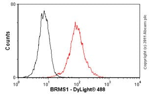 Flow Cytometry - Anti-BRMS1 antibody (ab57082)