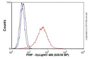 Flow Cytometry - Anti-PHIP antibody (ab57522)