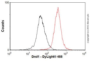 Flow Cytometry-Anti-Dnd1 antibody(ab57770)