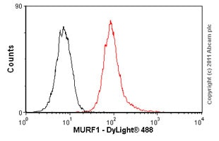 Flow Cytometry - Anti-MURF1 antibody (ab57865)