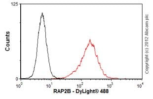Flow Cytometry-Anti-RAP2B antibody(ab58109)