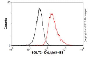 Flow Cytometry-Anti-SGLT2 antibody(ab58298)