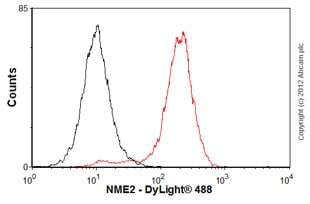 Flow Cytometry-Anti-NME2 antibody(ab60602)