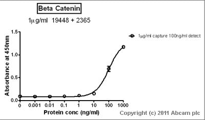 Sandwich ELISA - beta Catenin protein (Tagged) (ab63175)