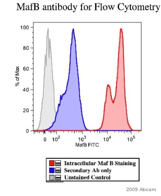 Flow Cytometry - MafB antibody (ab66506)