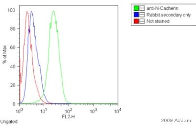 Flow Cytometry - Donkey F(ab')2 polyclonal Secondary Antibody to Rabbit IgG - H&L (PE), pre-adsorbed (ab7007)