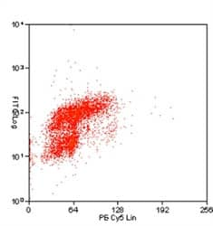 Flow Cytometry - Anti-BrdU antibody [BU1/75 (ICR1)] (FITC) (ab74545)
