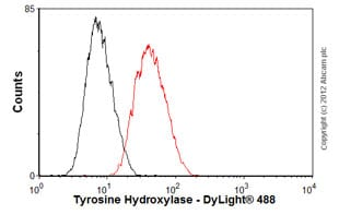 Flow Cytometry-Anti-Tyrosine Hydroxylase antibody [EP1533Y](ab75875)