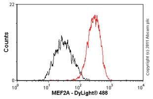 Flow Cytometry-MEF2A antibody [EP1706Y](ab76063)