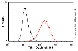 Flow Cytometry-YB1 antibody [EP2708Y](ab76149)