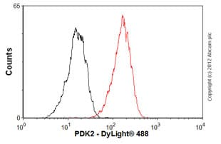 Flow Cytometry - Anti-PDK2 antibody [EP1947Y] (ab76152)