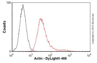Flow Cytometry-Anti-Actin antibody [ACTN05; same as C4] - BSA and Azide free(ab76548)
