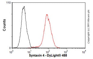 Flow Cytometry - Anti-Syntaxin 4 antibody (ab77037)