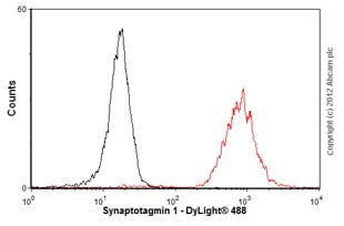 Flow Cytometry-Anti-Synaptotagmin 1 antibody(ab77314)