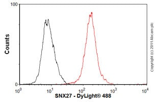 Flow Cytometry-Anti-SNX27 antibody [1C6](ab77799)