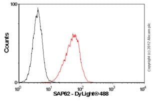 Flow Cytometry-Anti-SAP62 antibody [4G8](ab77800)