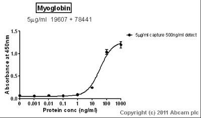Sandwich ELISA - Myoglobin antibody (ab78441)