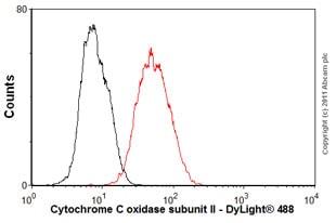 Flow Cytometry-Anti-Cytochrome C oxidase subunit II antibody [EPR3314](ab79393)