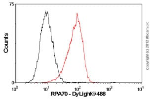 Flow Cytometry - Anti-RPA70 antibody [EPR3472] (ab79398)