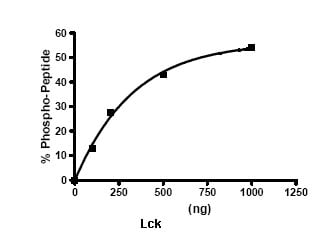 Functional Studies - Lck protein (Active) (ab79626)