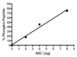 Functional Studies - Src protein (Active) (ab79635)