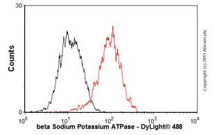 Flow Cytometry - Anti-beta 1 Sodium Potassium ATPase antibody [464.8] (ab8344)