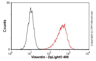 Flow Cytometry - Vimentin antibody [RV203] (ab8979)