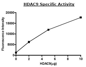 Functional Studies - HDAC9 protein (Active) (ab80350)