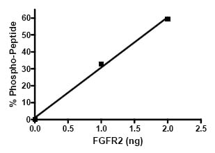 Functional Studies - FGFR2 protein (Active) (ab80368)