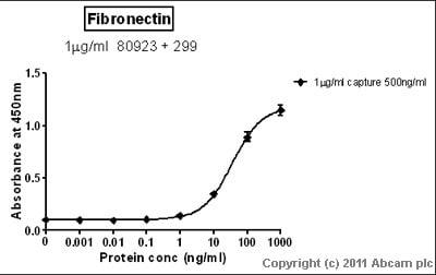 Sandwich ELISA - Fibronectin protein (Human) (ab81743)