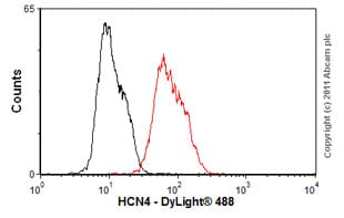 Flow Cytometry-Anti-HCN4 antibody [S114-10](ab85023)